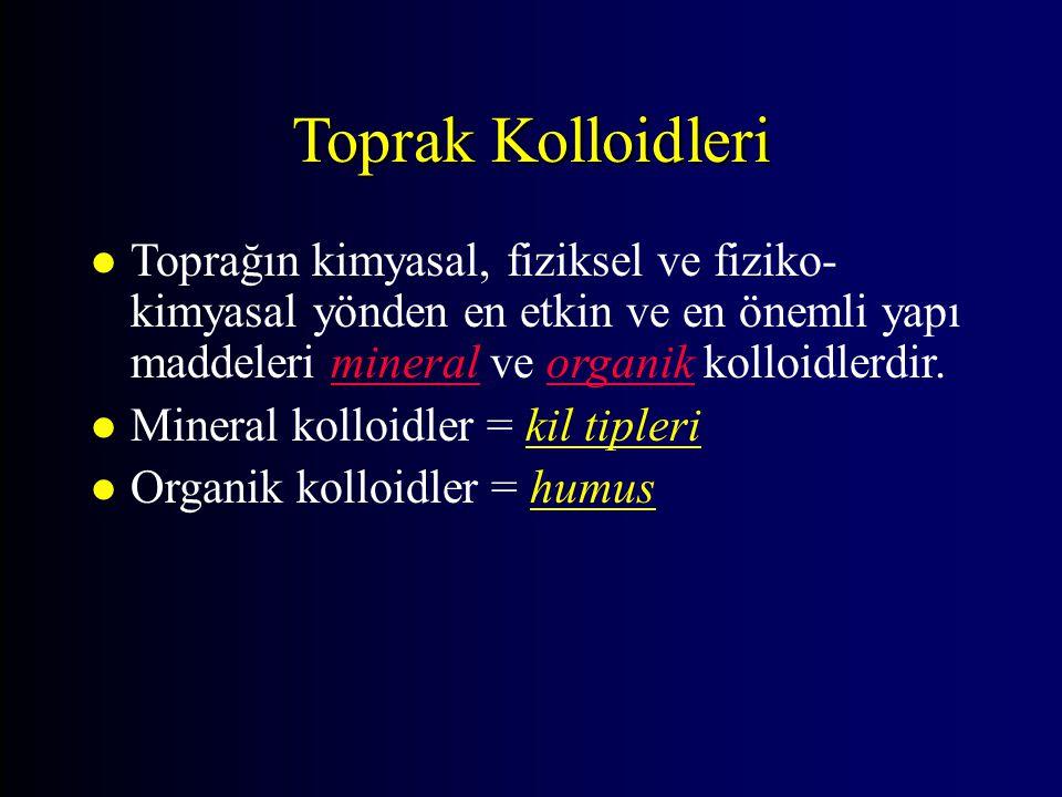Toprak Kolloidleri = Kil ler l İkincil silikat killeri l Fe – Al Oksi-hidrat killeri