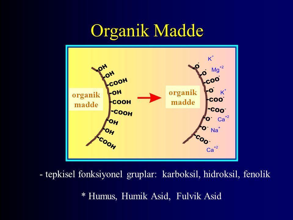 - tepkisel fonksiyonel gruplar: karboksil, hidroksil, fenolik * Humus, Humik Asid, Fulvik Asid organik madde Organik Madde