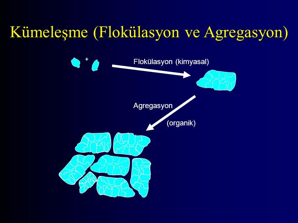 + Flokülasyon (kimyasal) Agregasyon (organik) Kümeleşme (Flokülasyon ve Agregasyon)