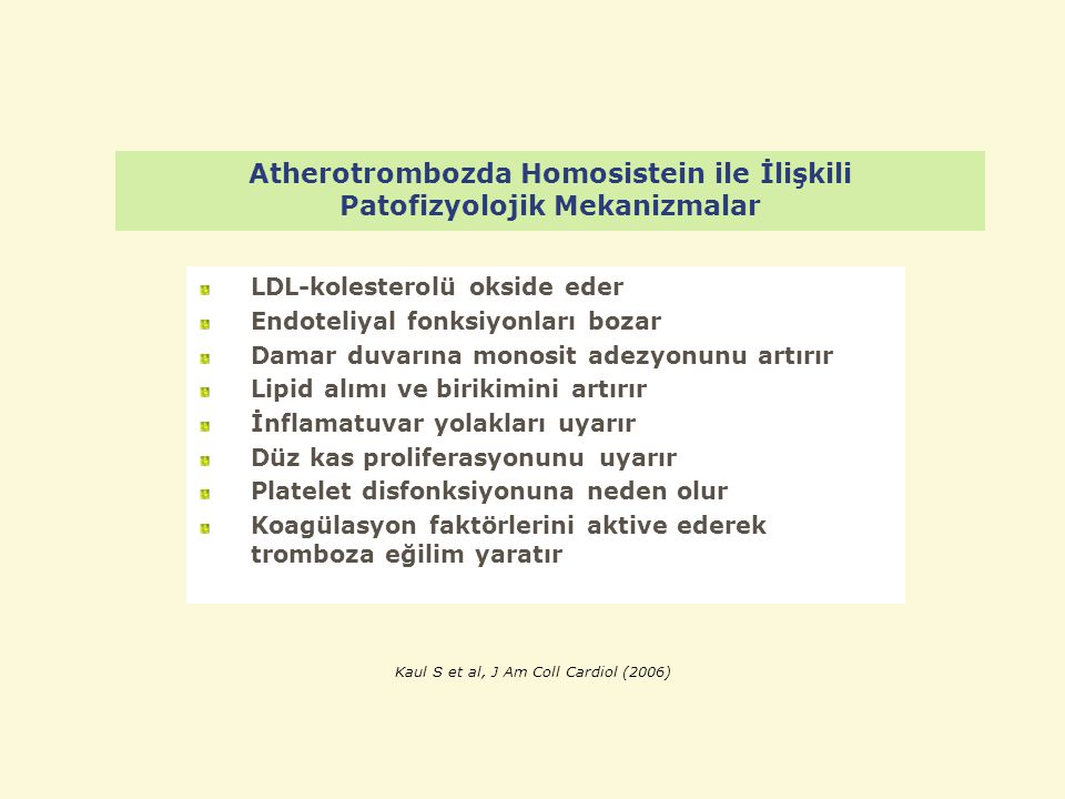 Atherotrombozda Homosistein ile İlişkili Patofizyolojik Mekanizmalar LDL-kolesterolü okside eder Endoteliyal fonksiyonları bozar Damar duvarına monosi