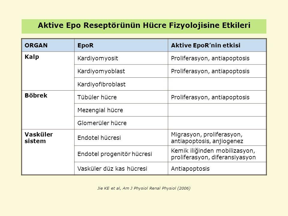 Aktive Epo Reseptörünün Hücre Fizyolojisine Etkileri ORGANEpoRAktive EpoR'nin etkisi Kalp KardiyomyositProliferasyon, antiapoptosis KardiyomyoblastPro