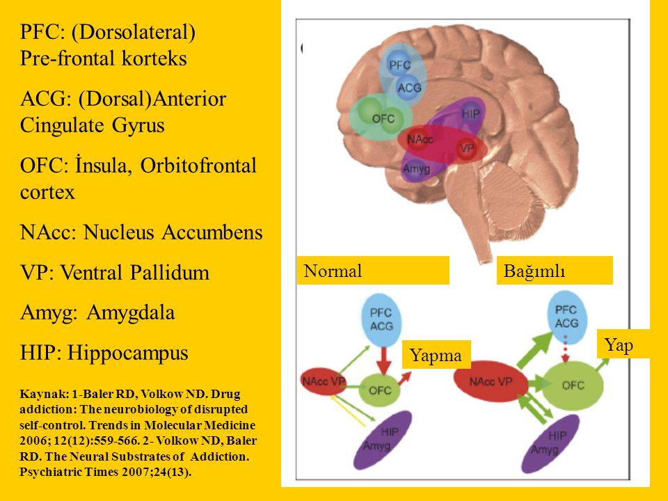 NormalBağımlı Yapma Yap PFC: (Dorsolateral) Pre-frontal korteks ACG: (Dorsal)Anterior Cingulate Gyrus OFC: İnsula, Orbitofrontal cortex NAcc: Nucleus