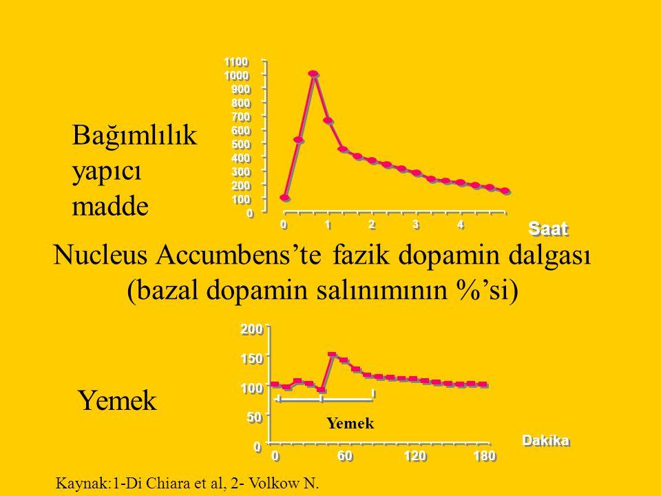 0 0 100 200 300 400 500 600 700 800 900 1000 1100 0 0 1 1 2 2 3 3 4 4 Saat 0 0 50 100 150 200 0 0 60 120 180 Dakika Nucleus Accumbens'te fazik dopamin dalgası (bazal dopamin salınımının %'si) Bağımlılık yapıcı madde Yemek Kaynak:1-Di Chiara et al, 2- Volkow N.