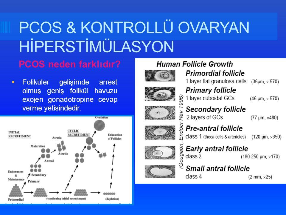 Griesinger et al., 2010 Eur J Obstet Gynecol Reprod Biol 0,2 mg triptorelin; Vitrification 2PN