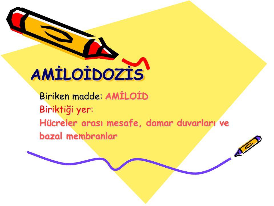 Amiloid H-E ile amorf, eosinofilik, hyalen bir madde olarak görülür Amorf: Şekilsiz, biçimsiz,sınırları belli olmayan Böbrek Myokard