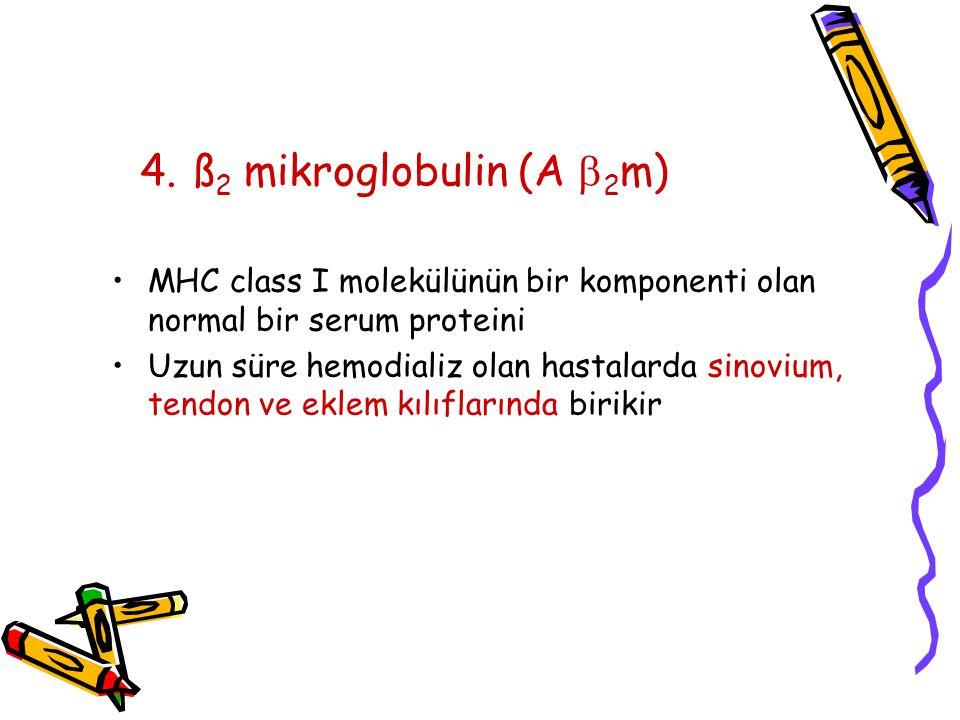 4. ß 2 mikroglobulin (A  2 m) MHC class I molekülünün bir komponenti olan normal bir serum proteini Uzun süre hemodializ olan hastalarda sinovium, te