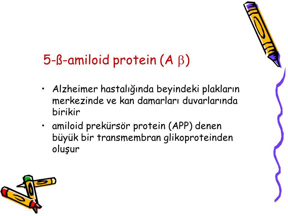 5-ß-amiloid protein (A  ) Alzheimer hastalığında beyindeki plakların merkezinde ve kan damarları duvarlarında birikir amiloid prekürsör protein (APP) denen büyük bir transmembran glikoproteinden oluşur