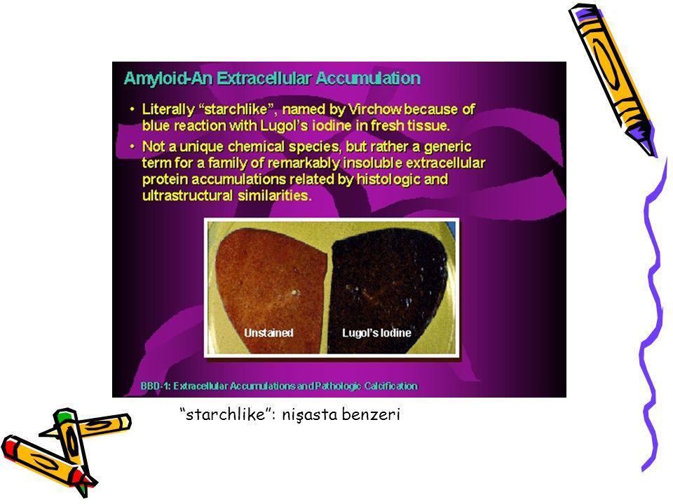 Endokrin amiloid Endokrin tümörlerde lokalize amiloid mikroskopik olarak birikebilir Tiroid medüller karsinomu, pankreasın adacık tümörleri, feokromositomlar, midenin undiferansiye karsinomu, Tip II DM'da pankreas Langerhans adacıklarında Amiloid bu durumlarda, hormonlar (medüller Ca da) veya proteinlerden (adacık amiloid polipeptid gibi) kaynaklanır