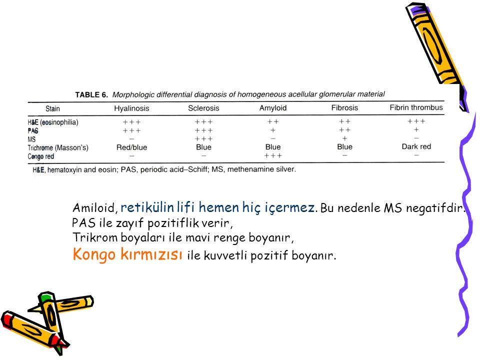 Amiloid, retikülin lifi hemen hiç içermez.Bu nedenle MS negatifdir.