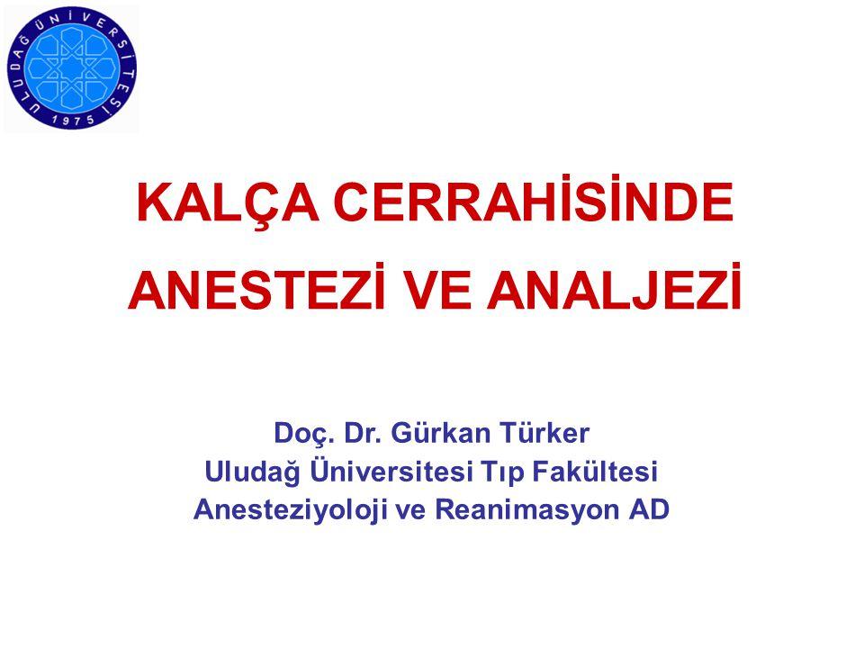 KALÇA CERRAHİSİNDE ANESTEZİ VE ANALJEZİ Doç. Dr. Gürkan Türker Uludağ Üniversitesi Tıp Fakültesi Anesteziyoloji ve Reanimasyon AD