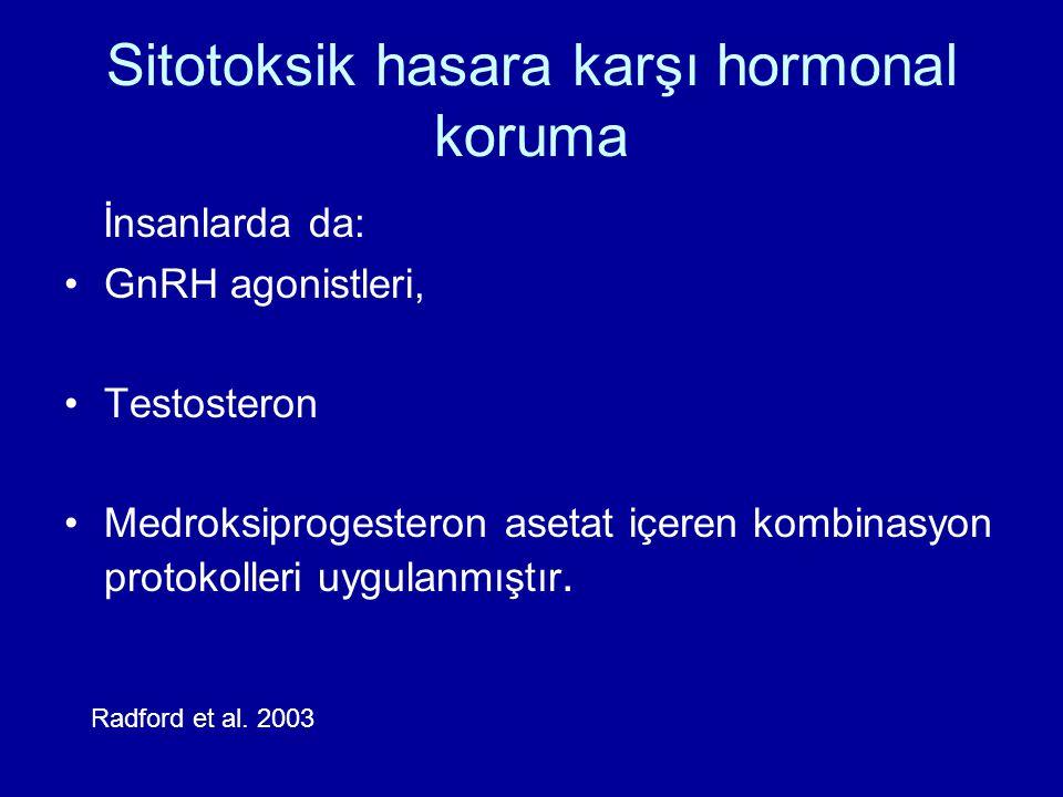 Sitotoksik hasara karşı hormonal koruma İnsanlarda da: GnRH agonistleri, Testosteron Medroksiprogesteron asetat içeren kombinasyon protokolleri uygula