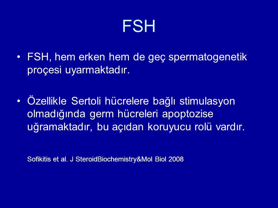 FSH FSH, hem erken hem de geç spermatogenetik proçesi uyarmaktadır. Özellikle Sertoli hücrelere bağlı stimulasyon olmadığında germ hücreleri apoptozis