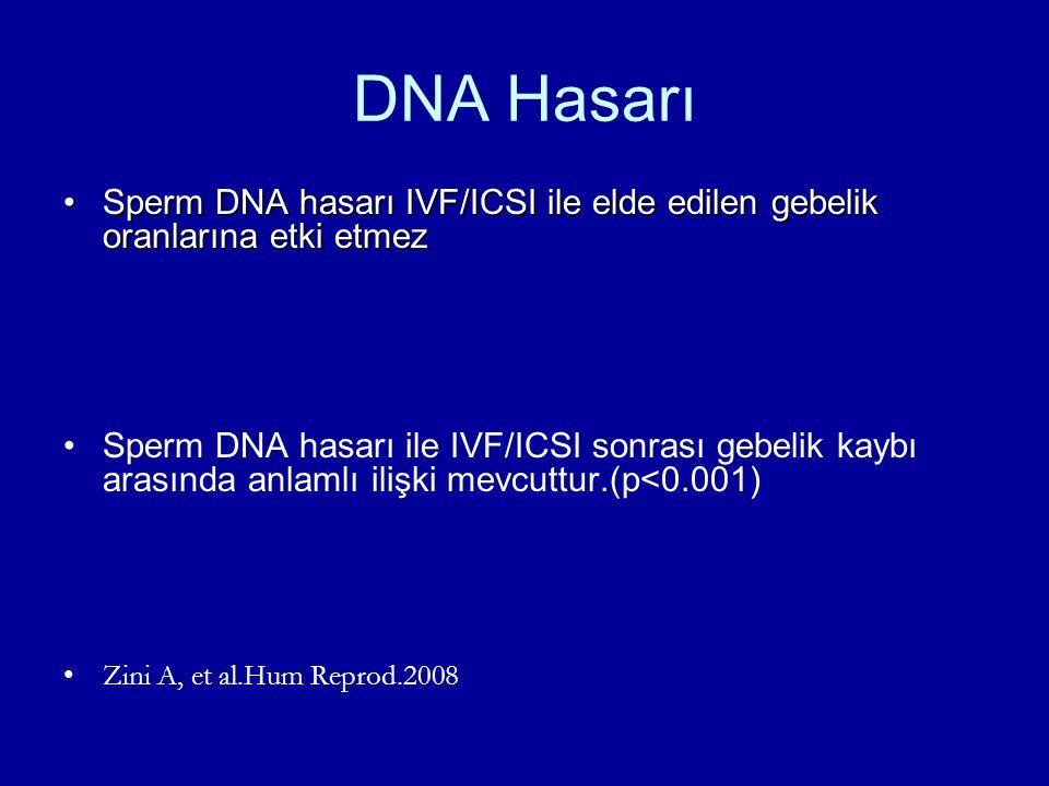 DNA Hasarı Sperm DNA hasarı IVF/ICSI ile elde edilen gebelik oranlarına etki etmezSperm DNA hasarı IVF/ICSI ile elde edilen gebelik oranlarına etki et