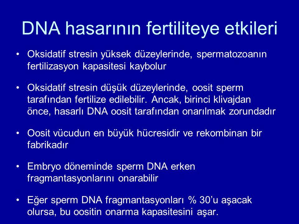 DNA hasarının fertiliteye etkileri Oksidatif stresin yüksek düzeylerinde, spermatozoanın fertilizasyon kapasitesi kaybolur Oksidatif stresin düşük düz