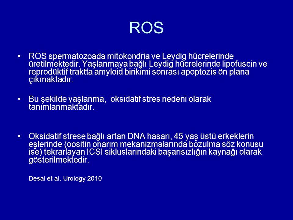ROS ROS spermatozoada mitokondria ve Leydig hücrelerinde üretilmektedir. Yaşlanmaya bağlı Leydig hücrelerinde lipofuscin ve reprodüktif traktta amyloi