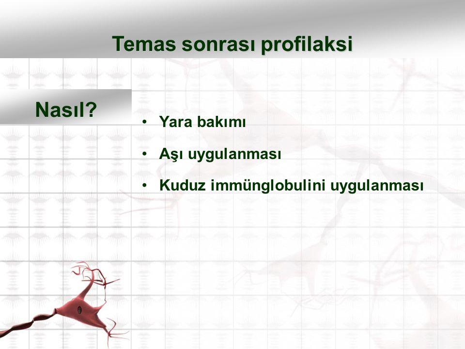 Yara bakımı Aşı uygulanması Kuduz immünglobulini uygulanması Temas sonrası profilaksi Nasıl?