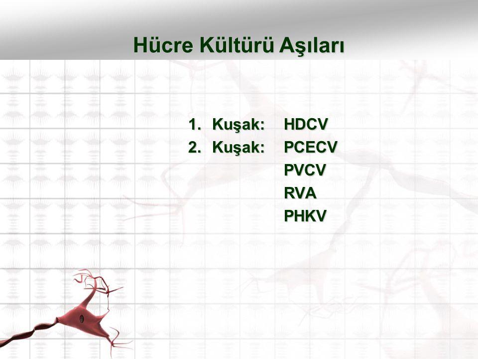 1.Kuşak: HDCV 2.Kuşak: PCECV PVCVRVAPHKV Hücre Kültürü Aşıları
