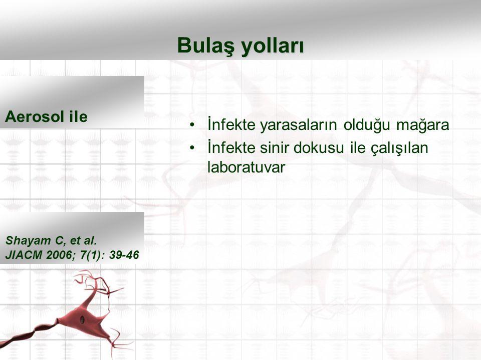 İnfekte yarasaların olduğu mağara İnfekte sinir dokusu ile çalışılan laboratuvar Bulaş yolları Shayam C, et al. JIACM 2006; 7(1): 39-46 Aerosol ile