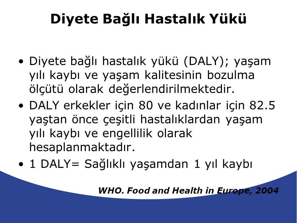 2000 yılında Avrupa Kıtasında 136 milyon yıl sağlıklı yaşam yılı kaybı (DALY) hesaplanmıştır.
