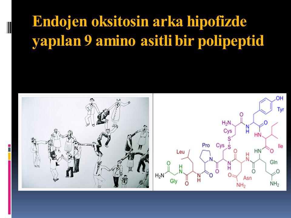 Literatürden yeni bulgular…  In vitro ve in vivo araştırmalarda önceden uygulanan oksitosinle uterus kasında oksitosin reseptör desensitizasyonu  Travay indüksiyonunda yüksek doz oksitosine rağmen gözlenen fazla kanama; sinyal iletiminde azalma sonucu oksitosin reseptörlerinde zaman ve konsantrasyon bağımlı desensitizasyondan kaynaklanır  Postpartum yüksek doz oksitosin de akut reseptör desensitizasyonu yaparak ek oksitosine yanıtsızlık Balki et al.