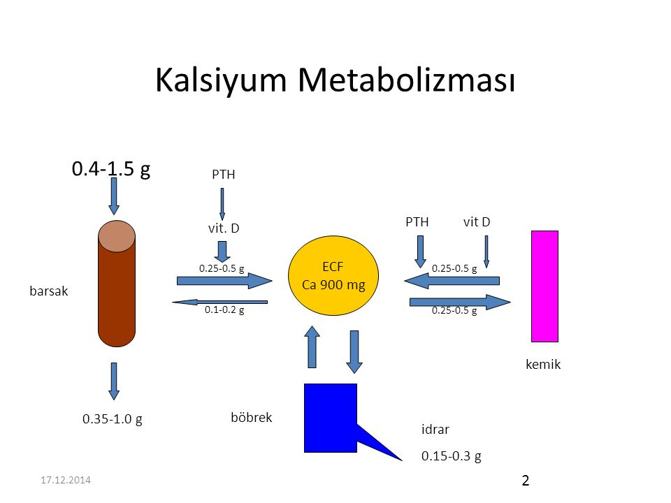 17.12.2014 3 D Vitamini ve önemi Kalsiyum metabolizması başlıca üç hormonun kontrolü altındadır: PTH D Vitamini Kalsitonin (önemsiz)