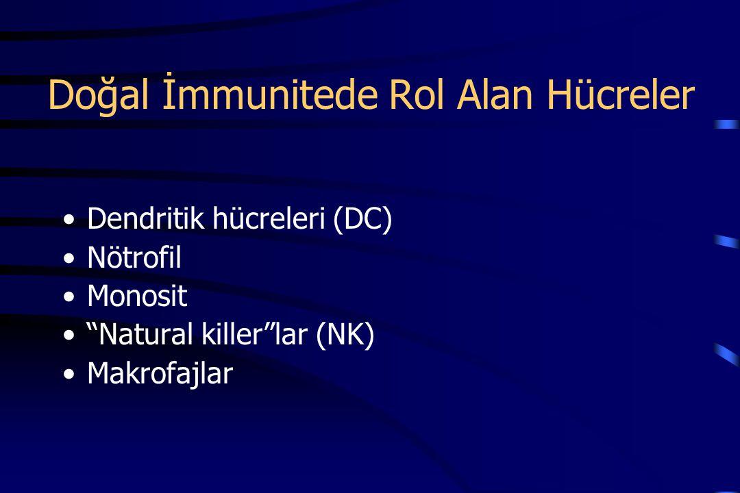 Doğal İmmunitede Rol Alan Hücreler Dendritik hücreleri (DC) Nötrofil Monosit Natural killer lar (NK) Makrofajlar