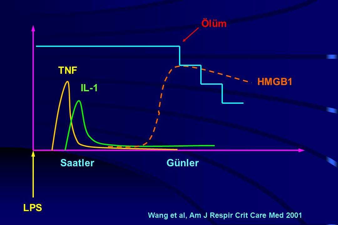 Ölüm HMGB1 SaatlerGünler LPS Wang et al, Am J Respir Crit Care Med 2001 IL-1 TNF