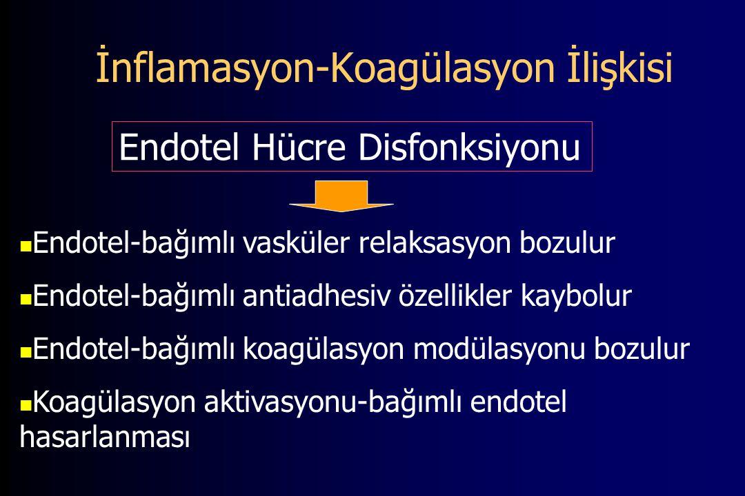 İnflamasyon-Koagülasyon İlişkisi Endotel-bağımlı vasküler relaksasyon bozulur Endotel-bağımlı antiadhesiv özellikler kaybolur Endotel-bağımlı koagülasyon modülasyonu bozulur Koagülasyon aktivasyonu-bağımlı endotel hasarlanması Endotel Hücre Disfonksiyonu