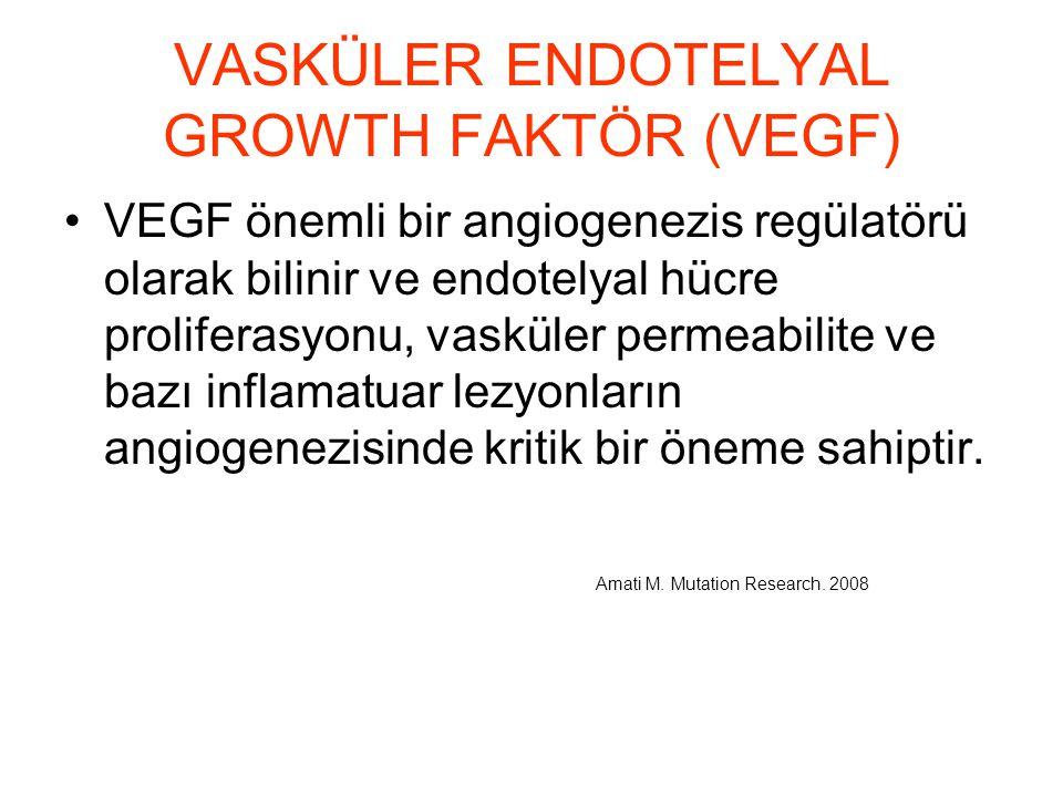 VASKÜLER ENDOTELYAL GROWTH FAKTÖR (VEGF) VEGF önemli bir angiogenezis regülatörü olarak bilinir ve endotelyal hücre proliferasyonu, vasküler permeabil