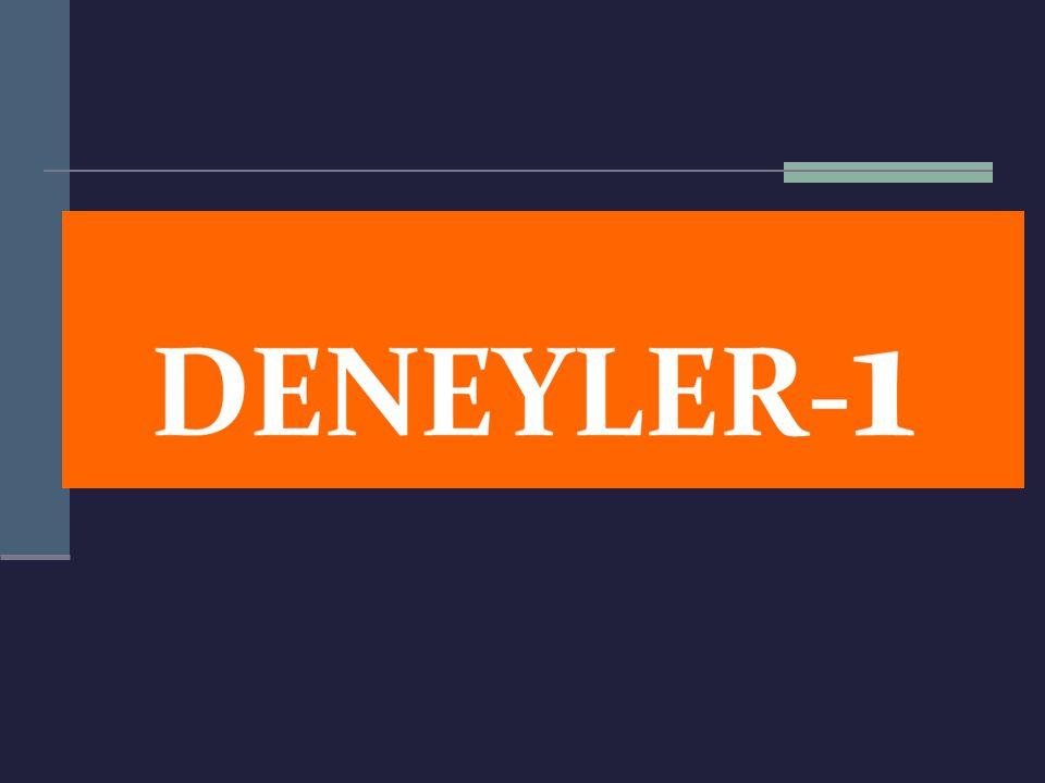 Deney 11