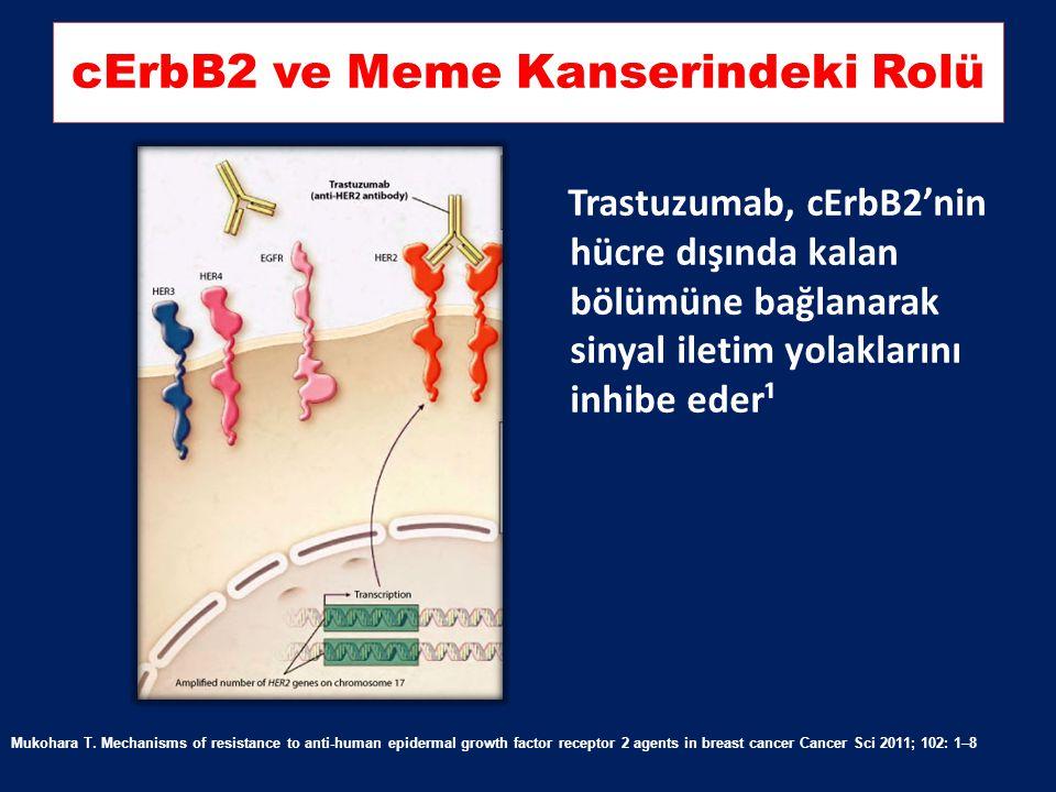 SOS Grb2 Shc Grb2 Ras Bad FasL HER2 HER3, HER1, HER 4 Ligand PI3K Akt PTEN Raf MEK 1/2 MAPK Proliferation Progression in cell cycle mTORFKHRGSK-3 p27