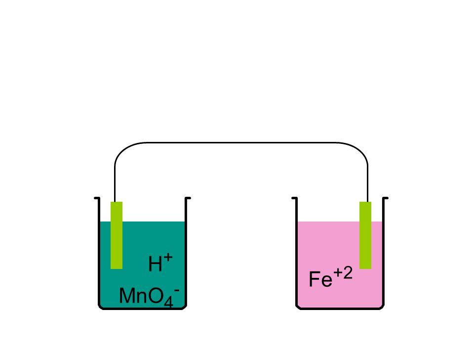 H + MnO 4 - Fe +2