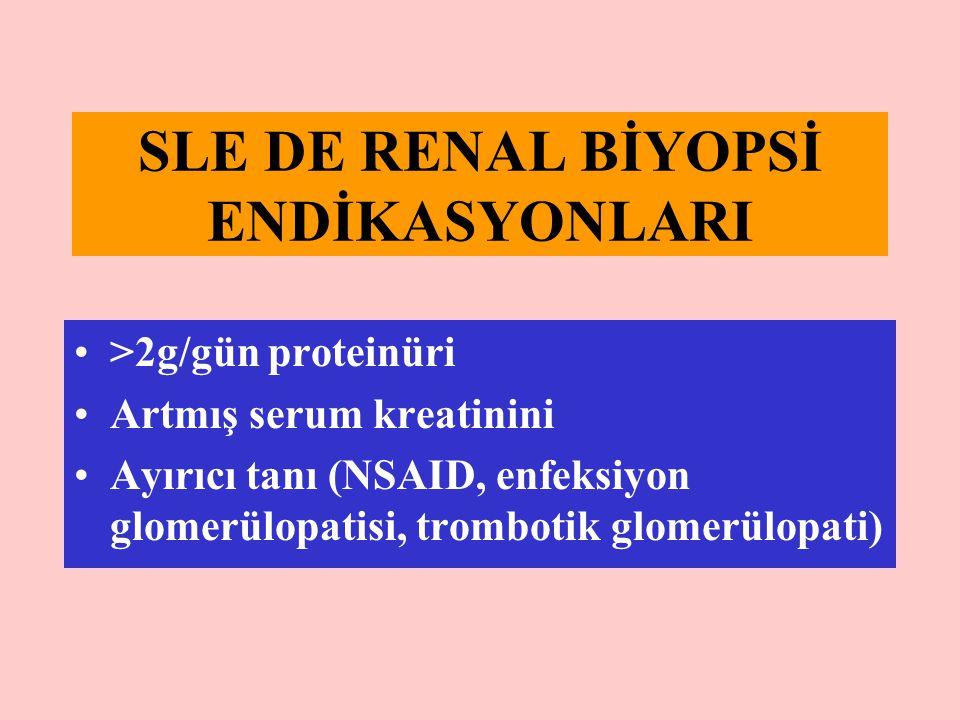 SLE DE RENAL BİYOPSİ ENDİKASYONLARI >2g/gün proteinüri Artmış serum kreatinini Ayırıcı tanı (NSAID, enfeksiyon glomerülopatisi, trombotik glomerülopat