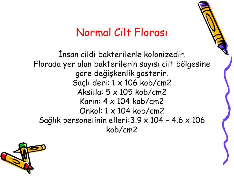 Normal Cilt Florası İnsan cildi bakterilerle kolonizedir. Florada yer alan bakterilerin sayısı cilt bölgesine göre değişkenlik gösterir. Saçlı deri: 1