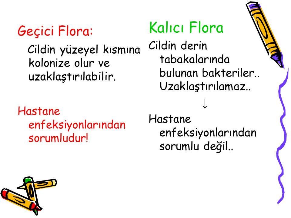 Geçici Flora: Cildin yüzeyel kısmına kolonize olur ve uzaklaştırılabilir. Hastane enfeksiyonlarından sorumludur! Kalıcı Flora Cildin derin tabakaların