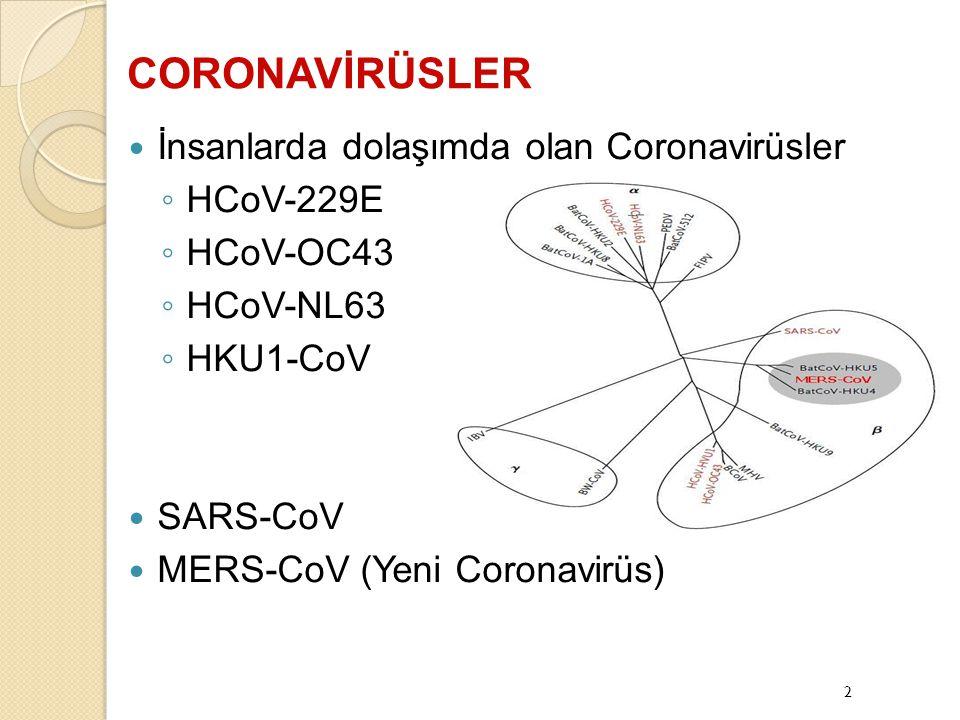 MERS-CoV kesin vaka tanımı ◦ Olası vaka tanımına uyan olgulardan laboratuvar yöntemlerle Yeni coronavirüs saptanan olgular ◦ Olası ve kesin vakalar ile karşılaşıldığında MERS CoV vaka takip algoritması uygulanır