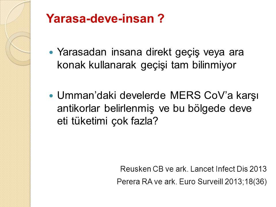 Yarasa-deve-insan .