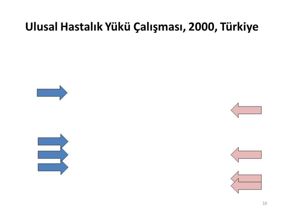 Ulusal Hastalık Yükü Çalışması, 2000, Türkiye 16
