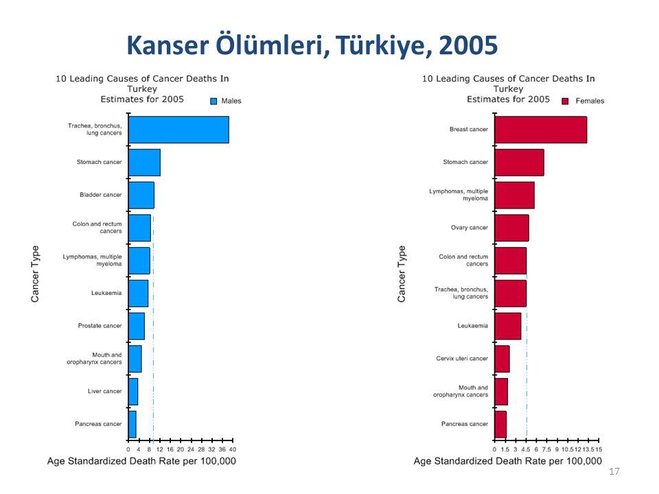 Kanser Ölümleri, Türkiye, 2005 17