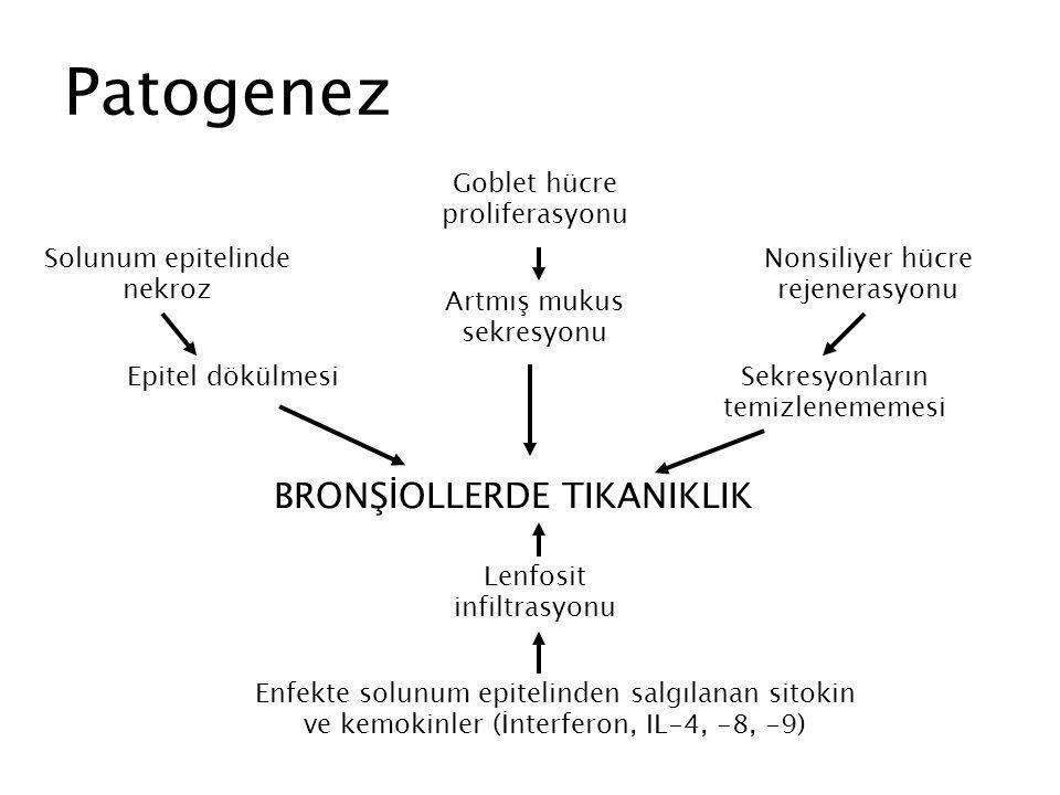 Patogenez Solunum epitelinde nekroz Epitel dökülmesi Nonsiliyer hücre rejenerasyonu Sekresyonların temizlenememesi Goblet hücre proliferasyonu Artmış