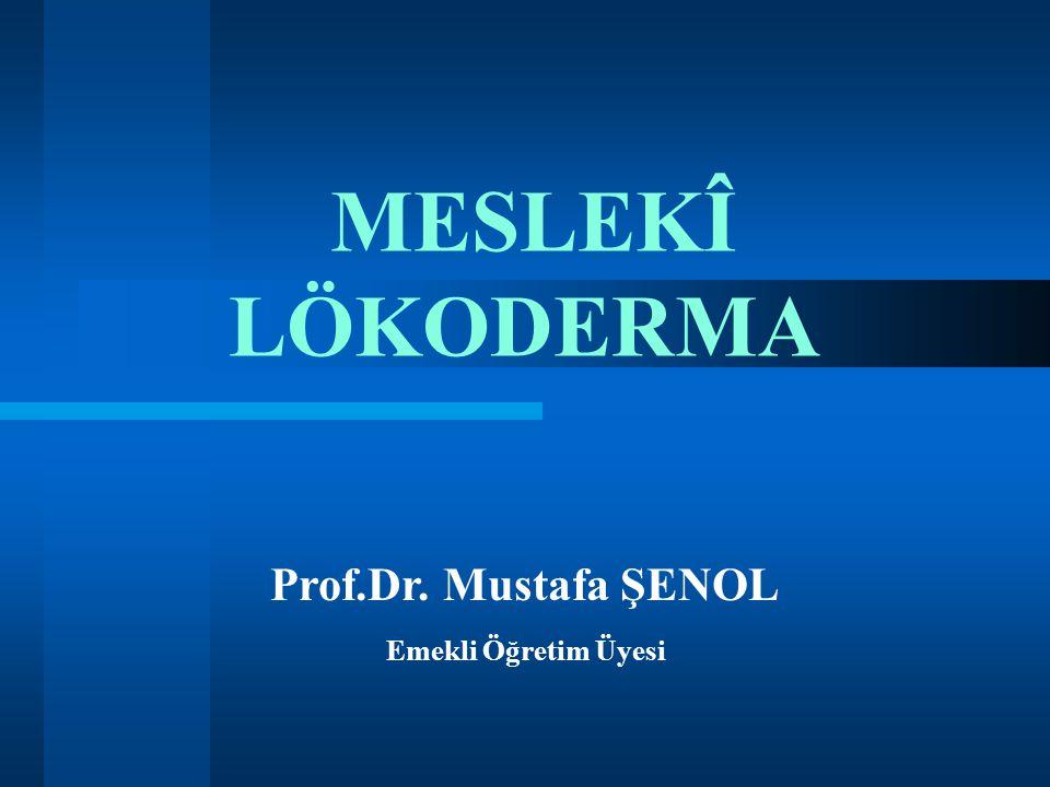 MESLEKÎ LÖKODERMA Prof.Dr. Mustafa ŞENOL Emekli Öğretim Üyesi