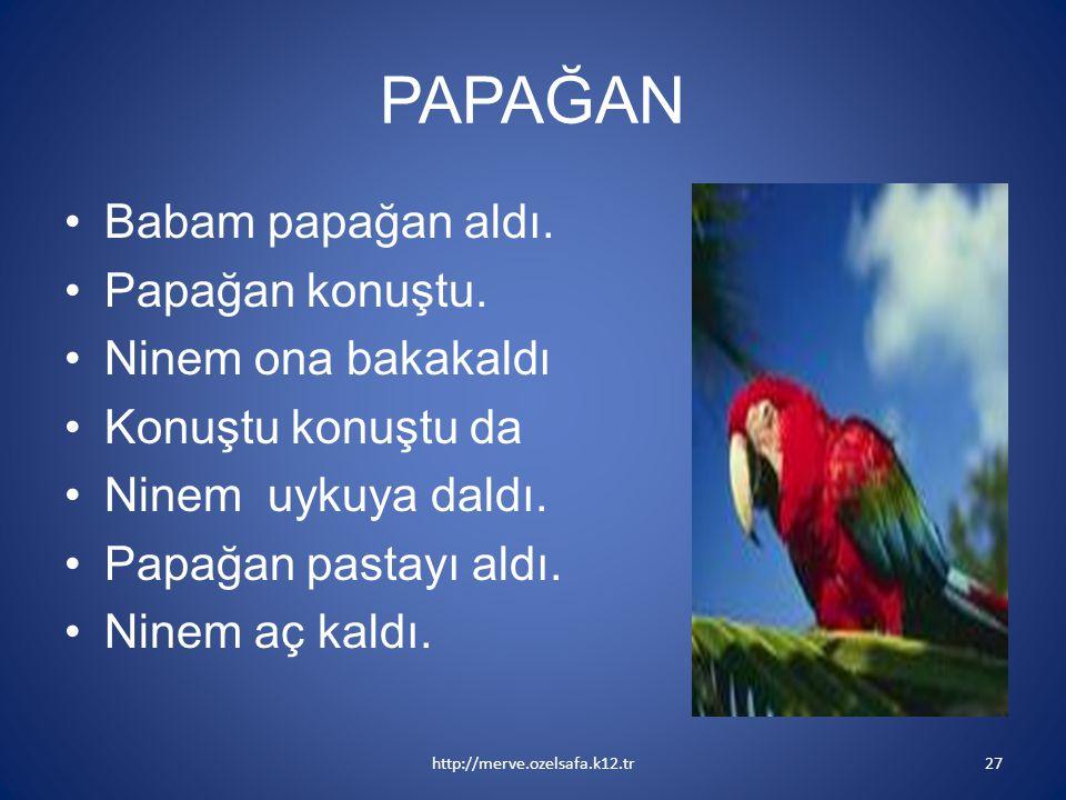 PAPAĞAN Babam papağan aldı. Papağan konuştu. Ninem ona bakakaldı Konuştu konuştu da Ninem uykuya daldı. Papağan pastayı aldı. Ninem aç kaldı. http://m