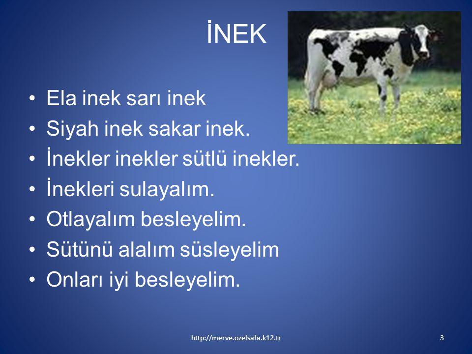 İNEK Ela inek sarı inek Siyah inek sakar inek. İnekler inekler sütlü inekler. İnekleri sulayalım. Otlayalım besleyelim. Sütünü alalım süsleyelim Onlar