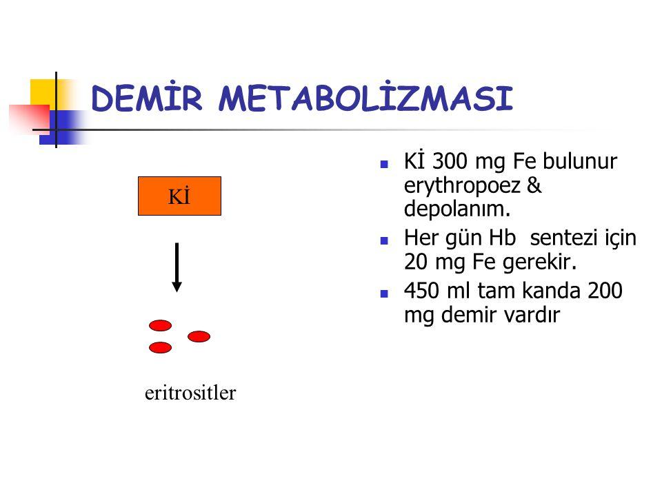 DEMİR METABOLİZMASI Kİ 300 mg Fe bulunur erythropoez & depolanım. Her gün Hb sentezi için 20 mg Fe gerekir. 450 ml tam kanda 200 mg demir vardır Kİ er