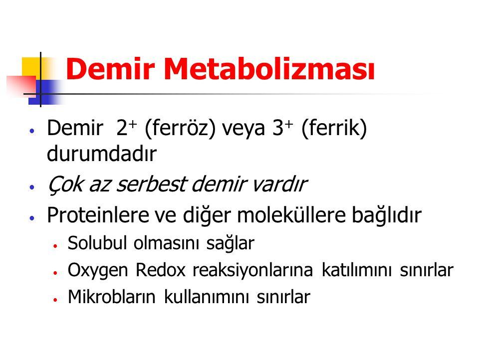 Demir Metabolizması Demir 2 + (ferröz) veya 3 + (ferrik) durumdadır Çok az serbest demir vardır Proteinlere ve diğer moleküllere bağlıdır Solubul olma