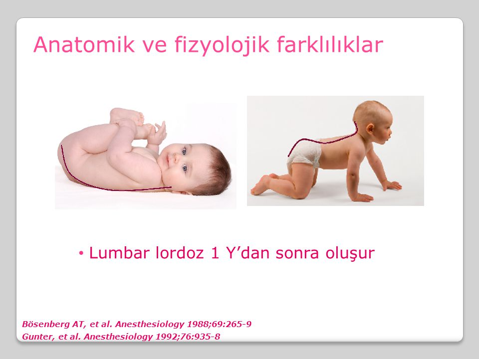 Anatomik ve fizyolojik farklılıklar Lumbar lordoz 1 Y'dan sonra oluşur Bösenberg AT, et al. Anesthesiology 1988;69:265-9 Gunter, et al. Anesthesiology