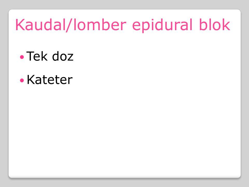 Kaudal/lomber epidural blok Tek doz Kateter