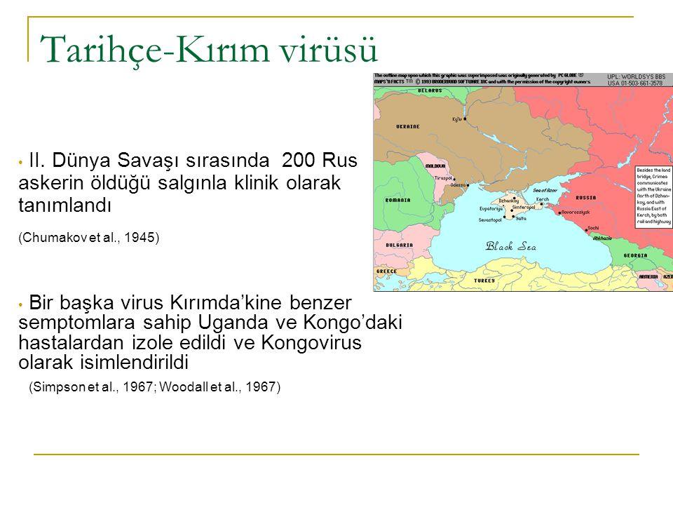 Tarihçe Çalışmalar Kırım ve Kongo'da izole edilen virusların çok yakın ilişkili olduğunu gösterdi.