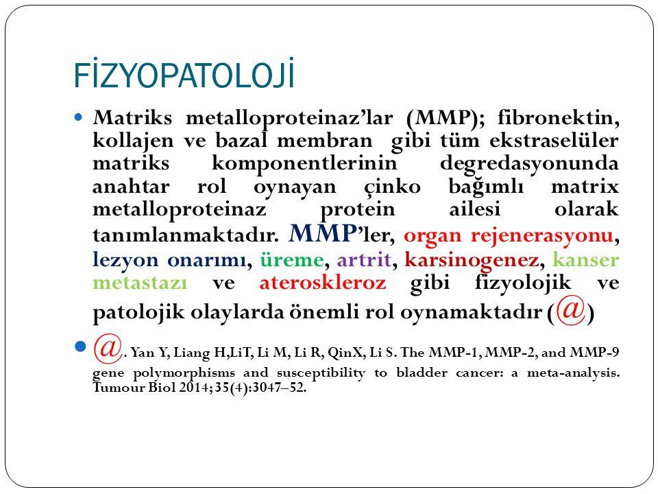 FİZYOPATOLOJİ Matriks metalloproteinaz'lar (MMP); fibronektin, kollajen ve bazal membran gibi tüm ekstraselüler matriks komponentlerinin degredasyonun