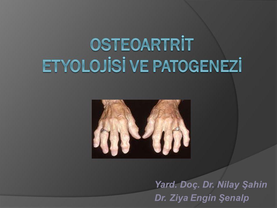 OA'DAKİ PATOLOİK SÜREÇLER  Kıkırdak  Subkondral kemik  Sinovyal membran, eklem kapsülü, ligamentler, kaslar